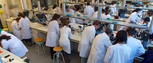 Laboratoris de Química de la Universitat Rovira i Virgili (URV) a Tarragona